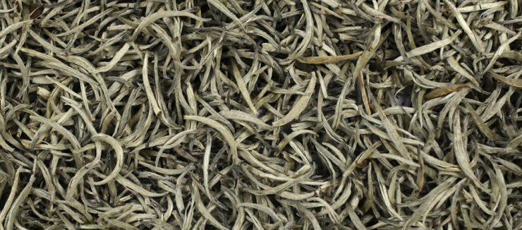 Is White Tea A Diuretic?