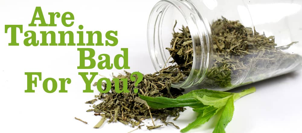 Are Tea Tannins Bad For You?