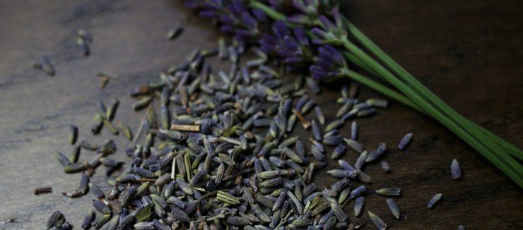 Lavender Tea and Sleep
