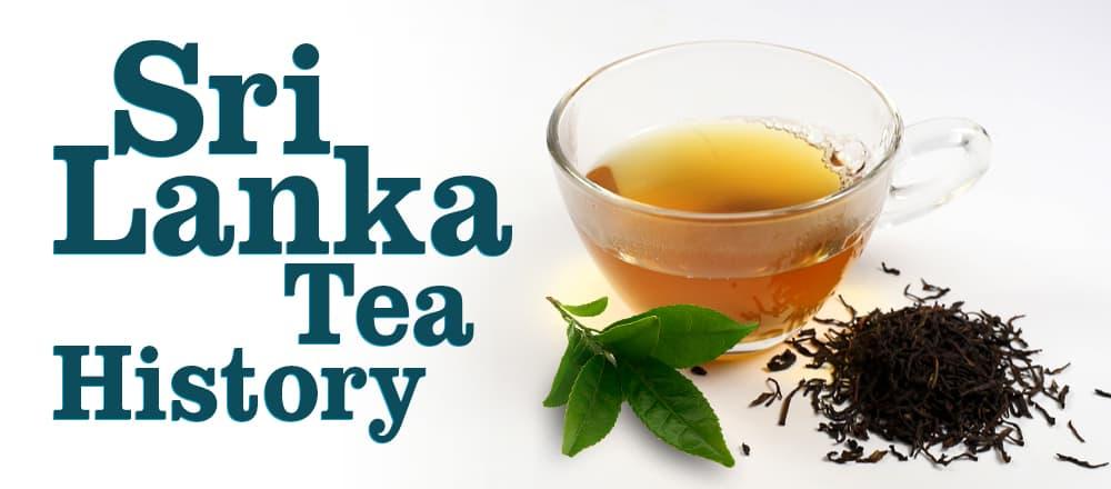 Sri Lanka Tea History