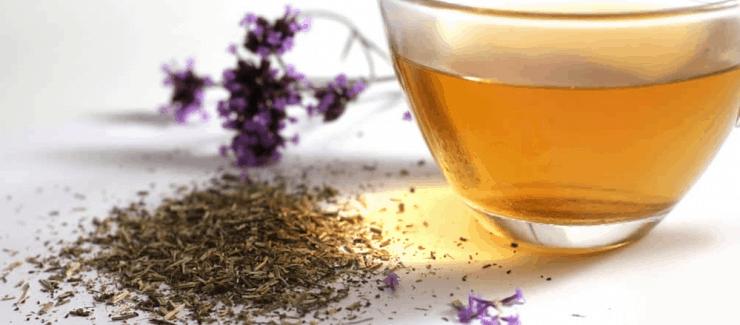 Vervain Tea in Pregnacy