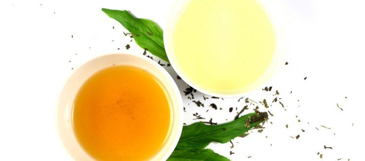 Who Discovered Tea