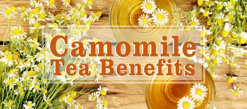 Camomile Tea Benefits