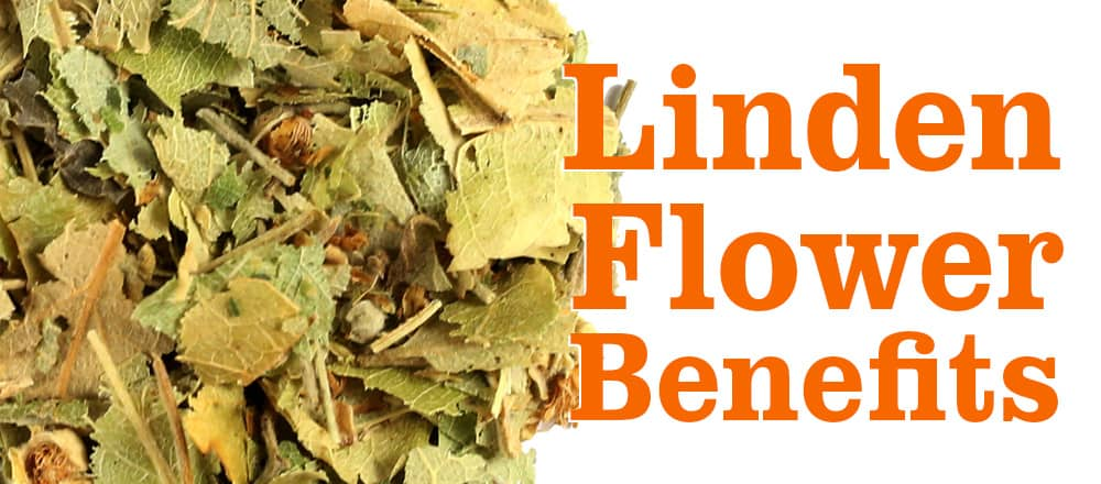 Linden Flower Benefits