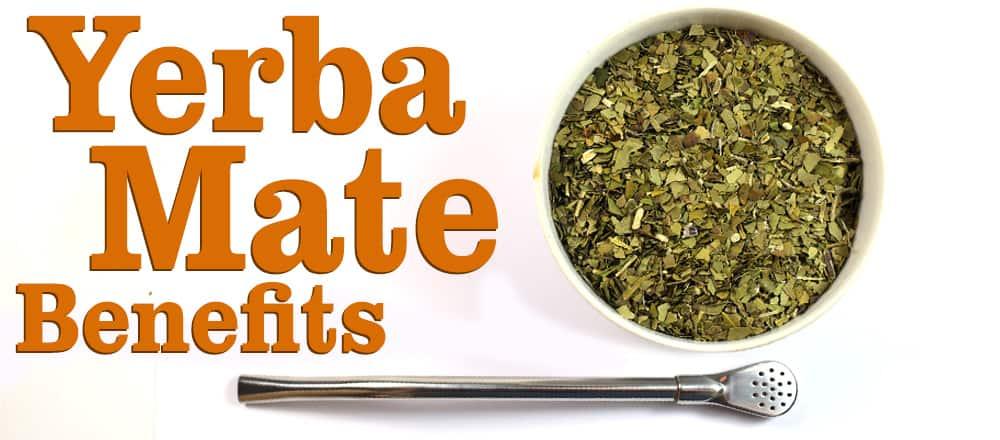 Yerba Mate Benefits