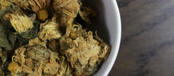 Where to Buy Chrysanthemum Tea