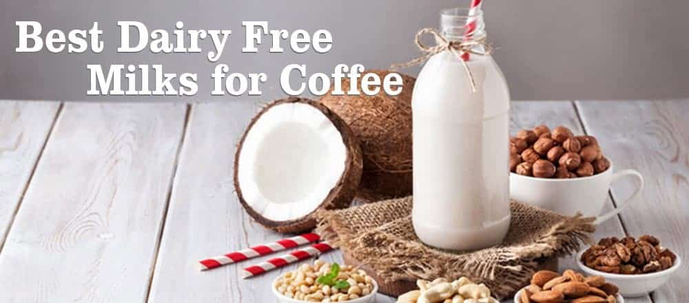 Best Dairy Free Milk For Coffee