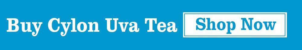 Buy Ceylon Uva Tea