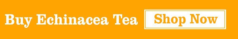 Buy Echineacea Tea