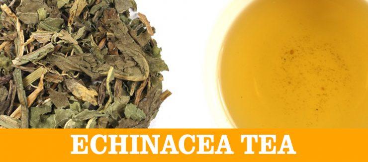 E Stands for Echinacea Tea