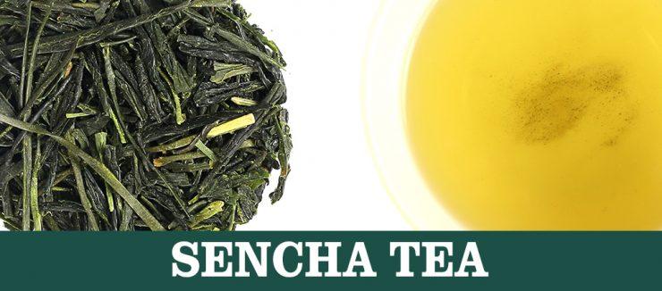 S Stands for Sencha Tea