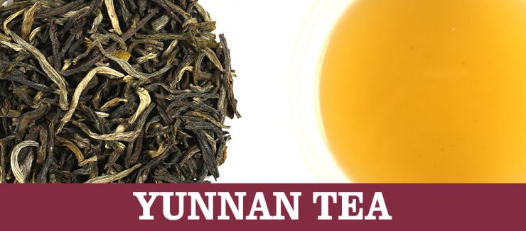 Y Stands for Yunnan Tea