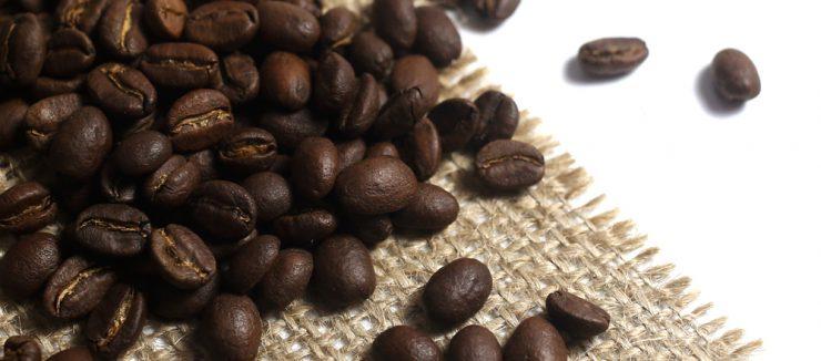 Conclusion Vegans Coffee