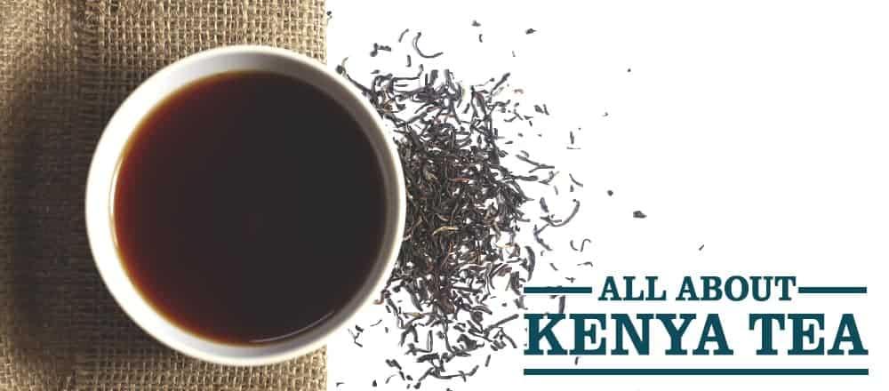 Kenya Tea : History, Benefits and More