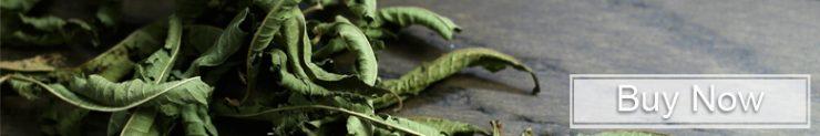 Buy Lemon Verbena Tea