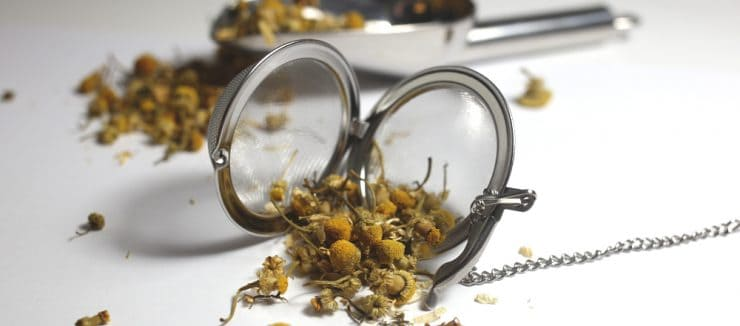Camomile Tea Antioxidants