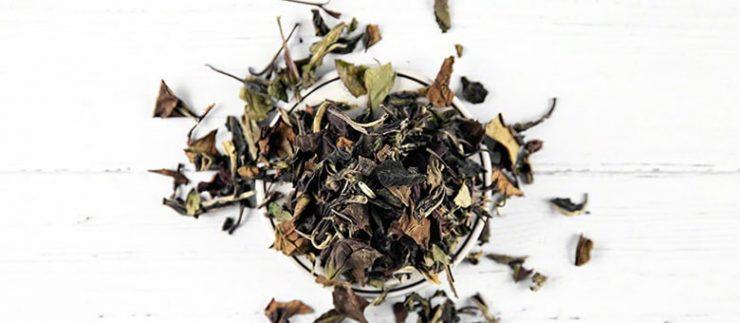 Popular Types of White Tea
