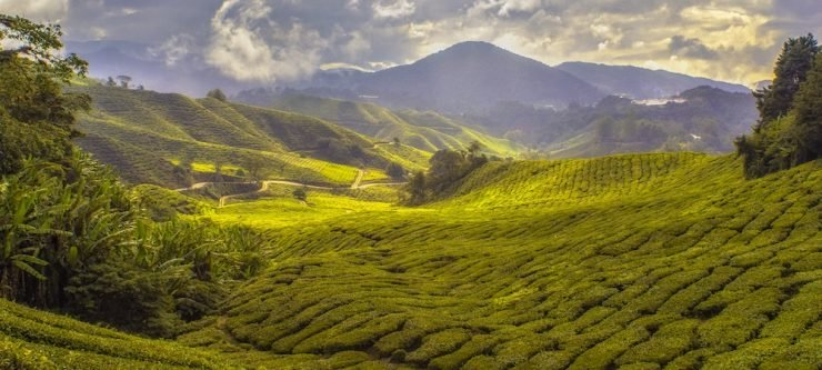 About Yunnan Province in China