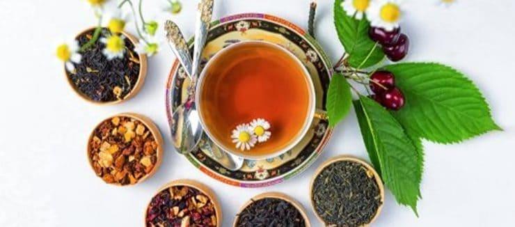 Best Tea for Immune System Health