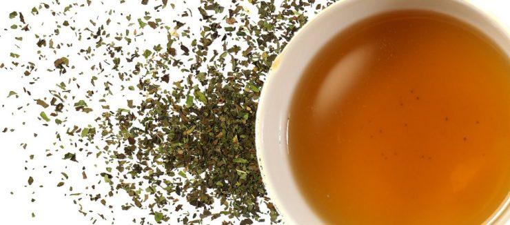 Spearmint Tea Benefits Conclusion