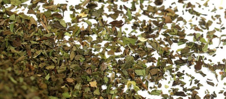 Spearmint Tea Side Effects