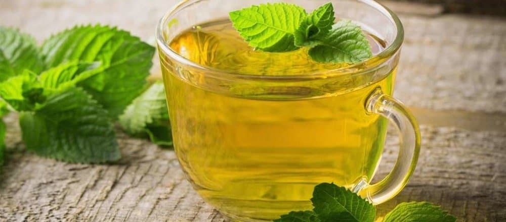 16 Peppermint Tea Benefits