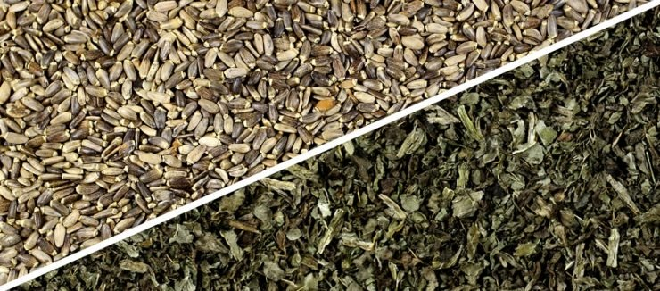 ilk thistle and heart health