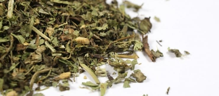 Milk Thistle Tea Reduces Cirrhosis Risks
