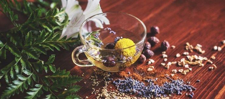 Milk Thistle Tea Side Effects