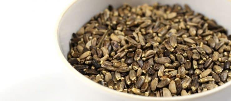 What is Milk Thistle Seed Tea
