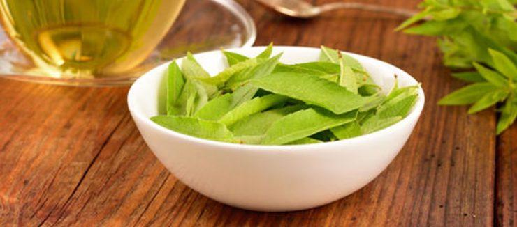 Does Lemon Verbena Tea Have Caffeiene