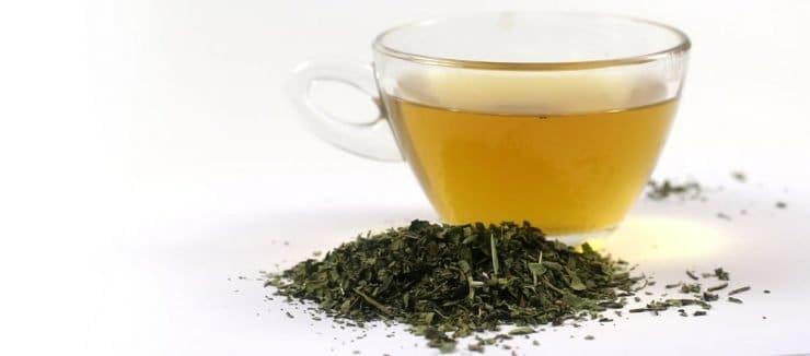 Echinacea Tea Caffeine