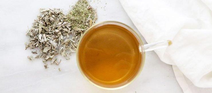 Echinacea Tea Helps Sleep and Anxiety