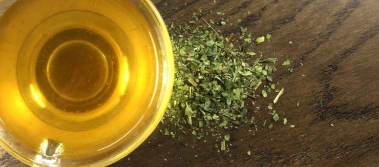 Echinacea Tea Properties