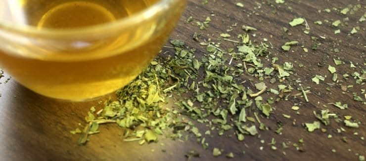 Echinacea Tea for Colds Sores