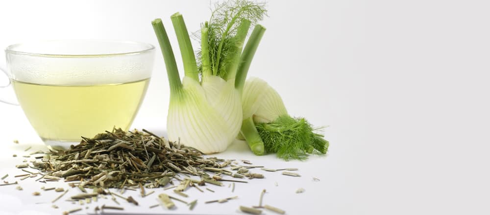 Fennel Tea Benefits and Side Effects