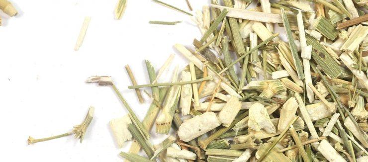 History of this Herbal Tea