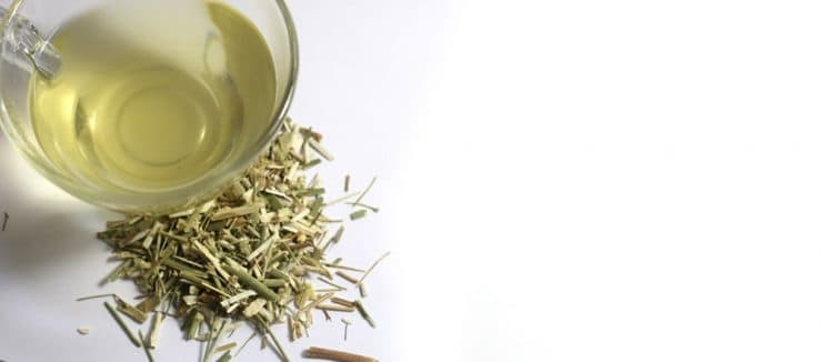 Is Fennel Tea Good for Weight Loss