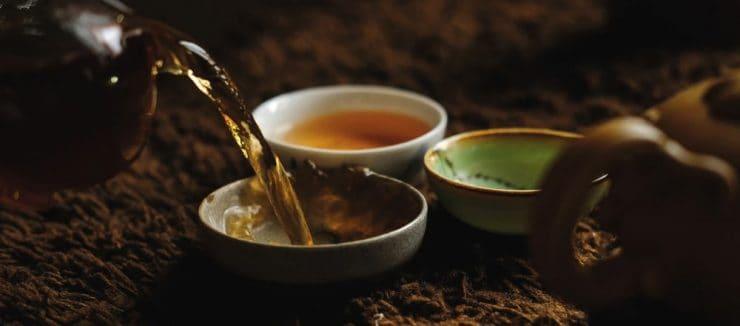 Is Pu erh Tea Good for Weight Loss