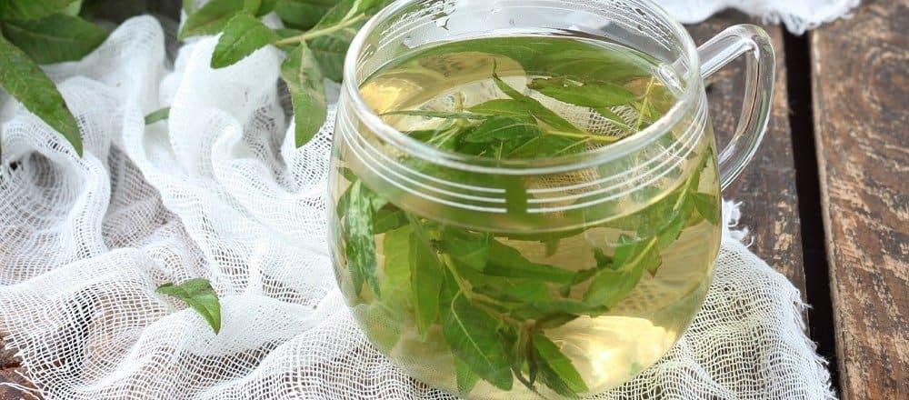 Lemon Verbena Benefits & Side Effects