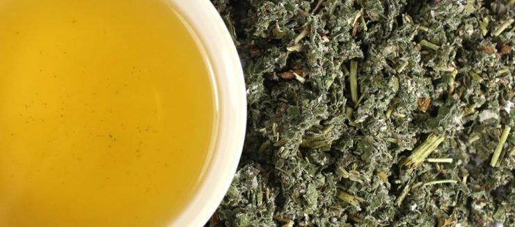 Other Raspberry Leaf Tea Benefits