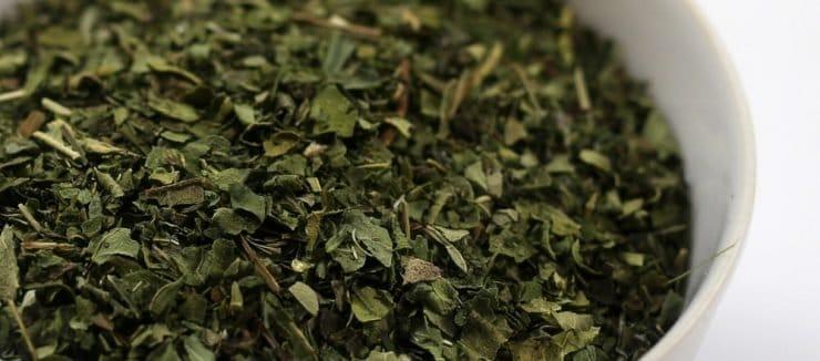 What is Echinacea Tea?