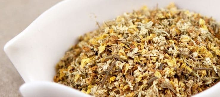 Elderflower Tea Pregnancy
