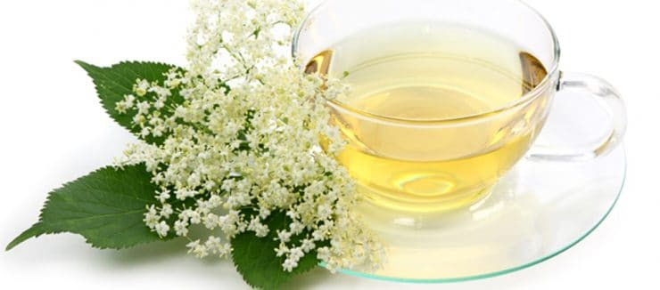 Elderflower Tea Properties