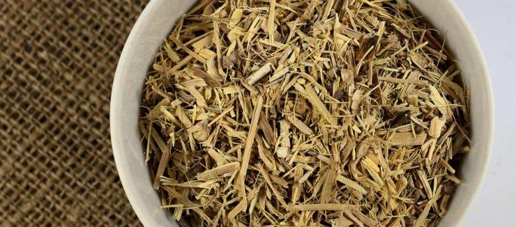 Ginseng Tea Pregnancy