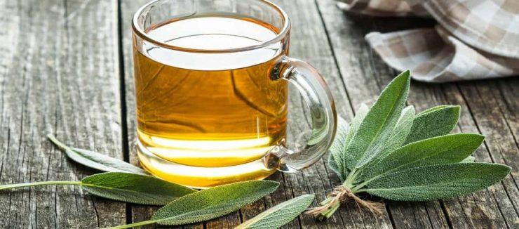 History of Sage Tea