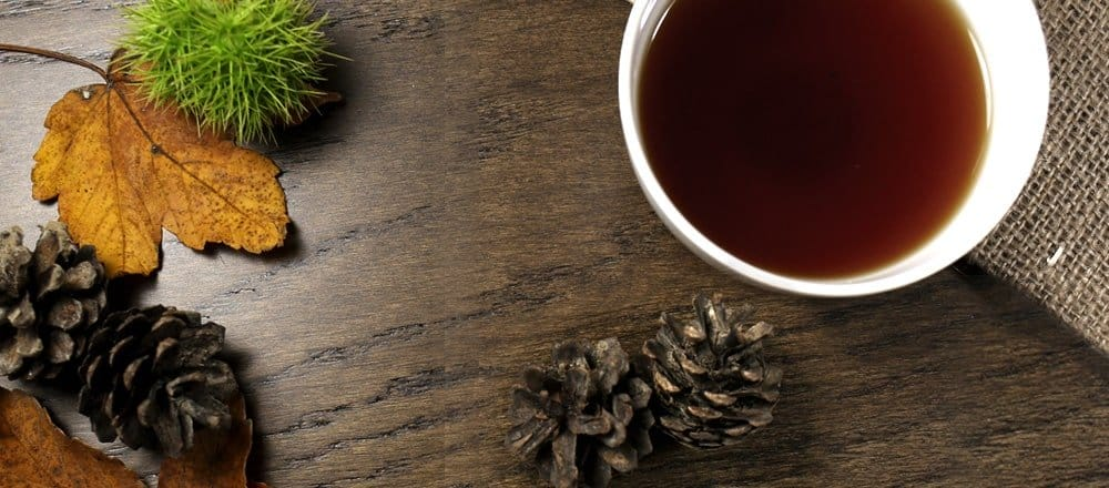 5 Must Have Teas For Autumn