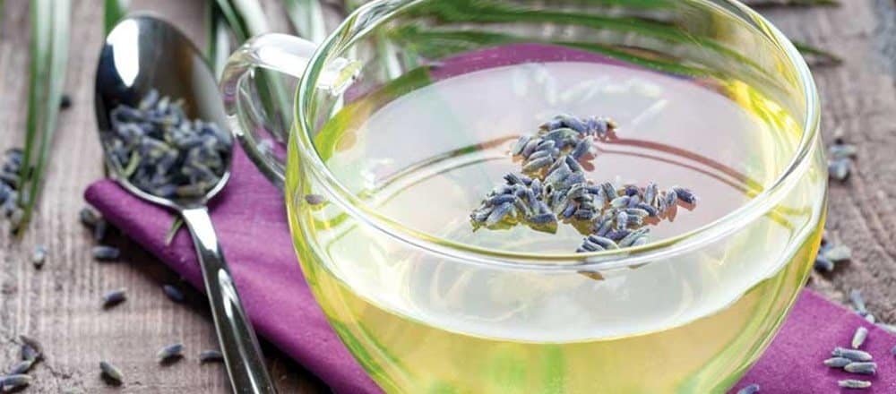 Lavender Tea Benefits and Side Effects