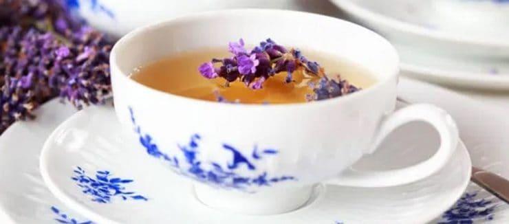 Lavender Tea Properties