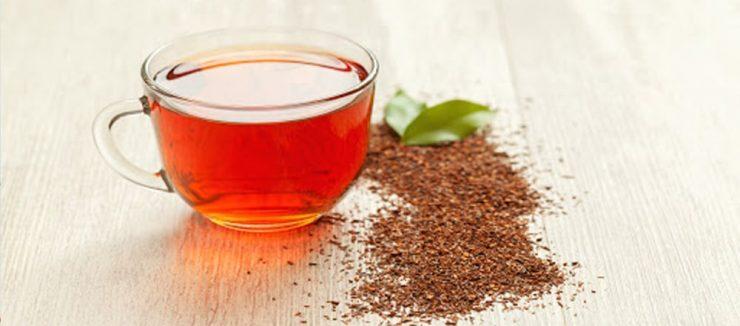 Rooibos Tea Side Effects